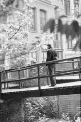 bridge 1 by maroe