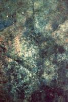 Black Market by dazzle-textures