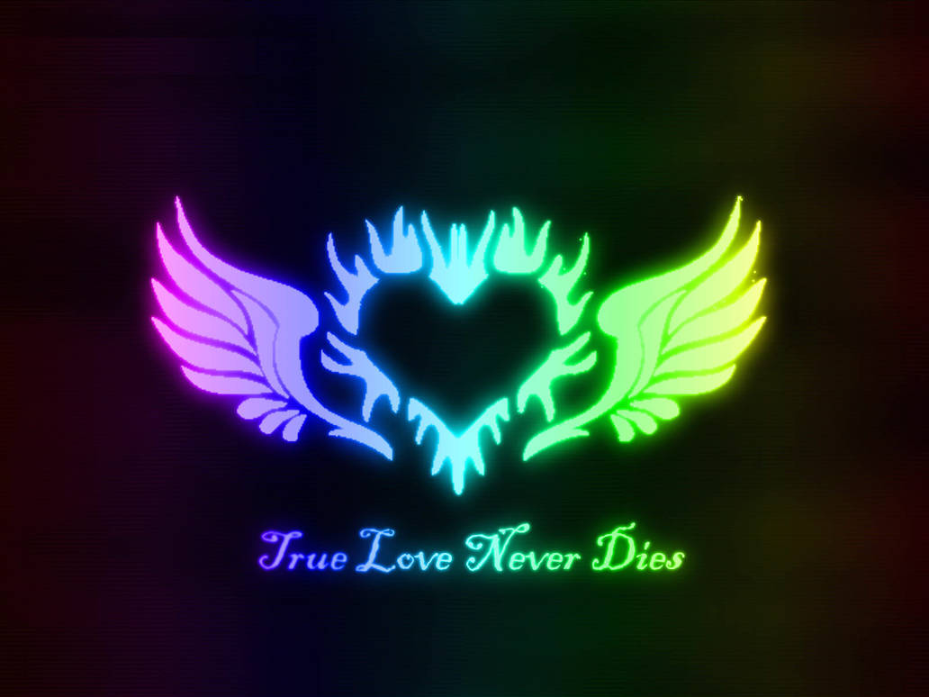 True Love Never Dies Wallpaper By Vee18551 On Deviantart