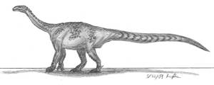 Riojasaurus incertus by EmperorDinobot