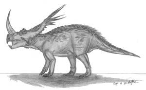 Rubeosaurus ovatus by EmperorDinobot