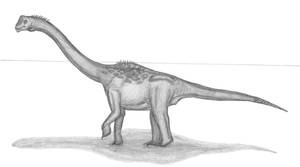 Europasaurus holgeri by EmperorDinobot