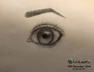 My Attempt at a Realistic eye by Chewri