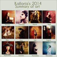 2014 Summary of Art by Kallaria
