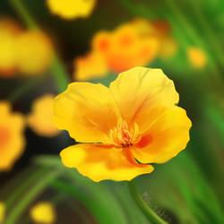 Yellow Flower by Milk-Addicc
