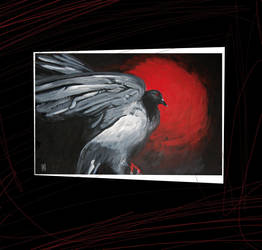 pigeon by mabi03
