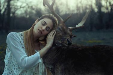 Artemis by FedericoSciuca