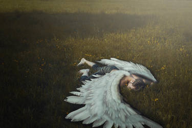 The death of Icarus by FedericoSciuca