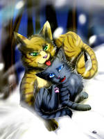 Warriors: Brackenfur and Cinderpaw by Marshcold