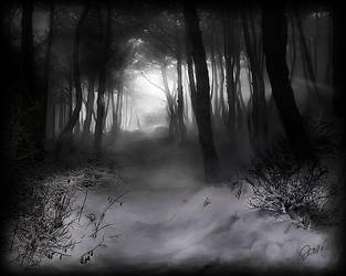 Black Forest by CurlyJul