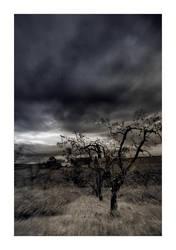 Storm by Triagon