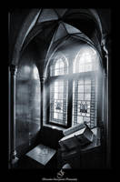 ...Bernardine Library... by canismaioris