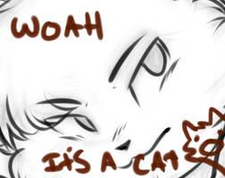 WOah it'S A catxdaS -WIP- by Spottedfire-cat
