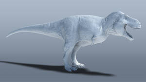 Tyrannosaurus 3D reconstruction (WIP) by Sketchy-raptor