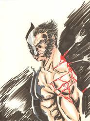 Wolverine by JamesLeeStone