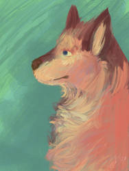 Dog by Marshknellow