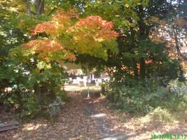 Graveyard Path by satsui