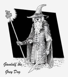 gandalf the grey dog by MachaetFafnir