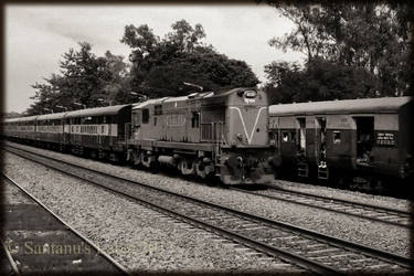 The Crossing Train by santa-chan-2012