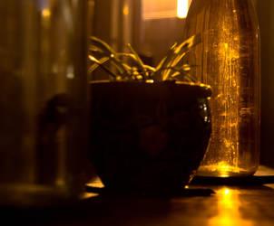 A healthy glow by NoltaN