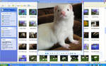 Screenshot_Bear by Yukkabelle