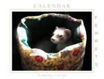 Ferrets Calendar -1- by Yukkabelle