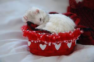 My Basket of Love by Yukkabelle