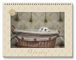 Ferrets Calendar - 4 - by Yukkabelle
