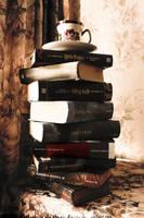 Book Castle by Ilman-Lintu