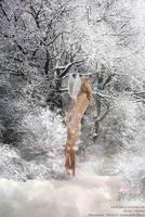 angel of snow by josemanchado