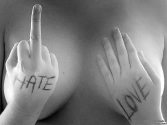 Hate and Love by josemanchado