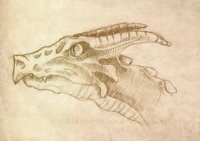 Dragon sketch by Nimphradora
