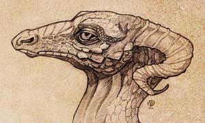 Dragon Study II by Nimphradora