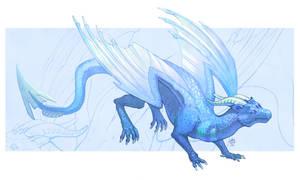 Drako by Nimphradora
