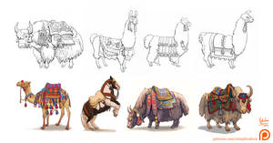 Animal collection by Nimphradora
