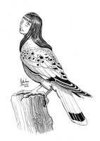 Harpy by Nimphradora