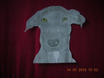 A Friends Dog I Drew by FurryForLife214