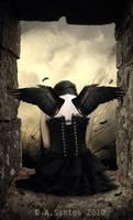 DARK ANGEL. by Lady-Lilith666