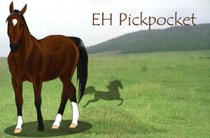 EH Pickpocket - For Sale by Okami-Haru