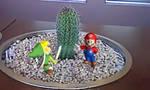 Mario Presents Link vs Cactus by PhxDragon