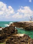 Bahamas Lagoon by qtwendy