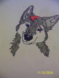 Lone Wolfy by TwilightWolfSong