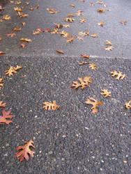 Leaves on A Sidewalk by EbbtideCheque