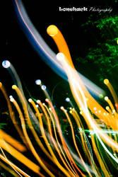 Rising Light by dmspram