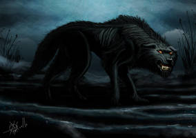 WOLF 300 by guayasamin