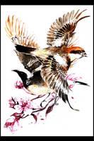 Study of Two Birds by tanaw