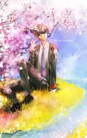 Sakura by tanaw