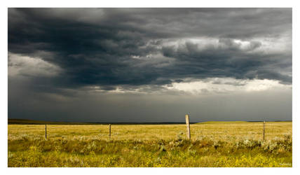 Stormy Sunshine by cutterp