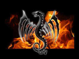 Dragon Tattoo - Flames by shr1mp