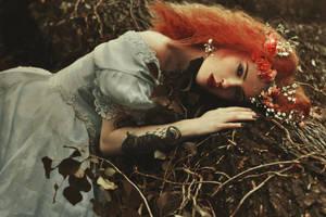 fairytale by OlgaBlair